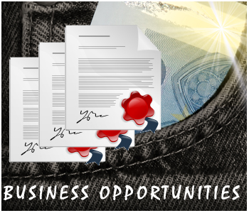 Business Opportunity PLR articles