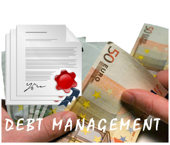 Debt Management PLR Articles