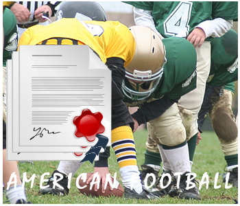 NFL Football PLR Articles