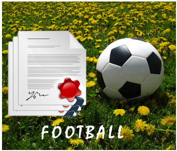 Soccer PLR Articles
